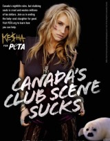 Ke$ha joins PETA to speak out against Canada's seal hunt